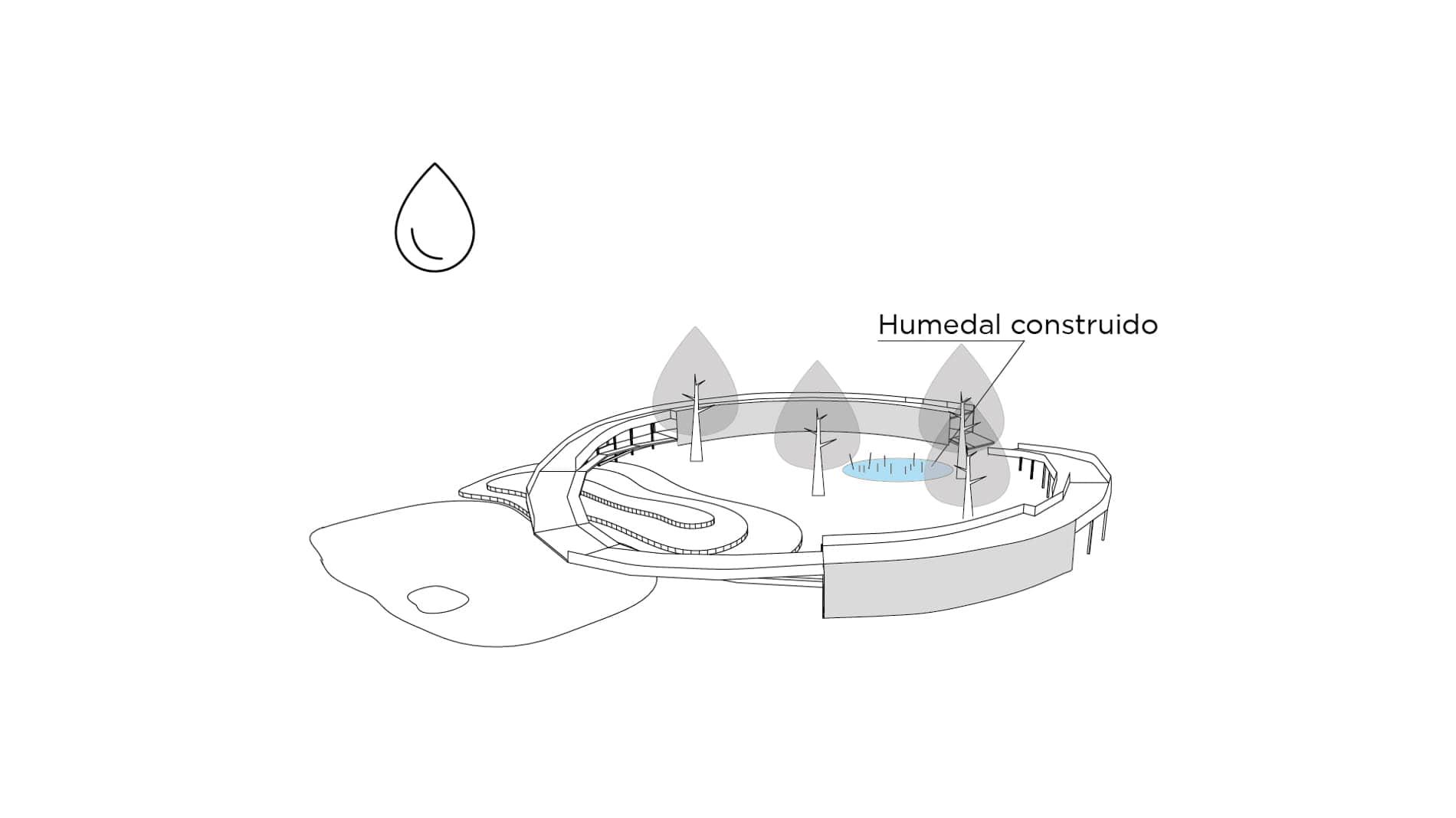 alt= contemplación sostenible del Ciclo de la vida