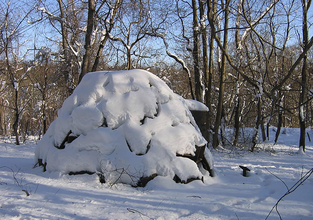 alt=Vista en invierno Gimme Shelter